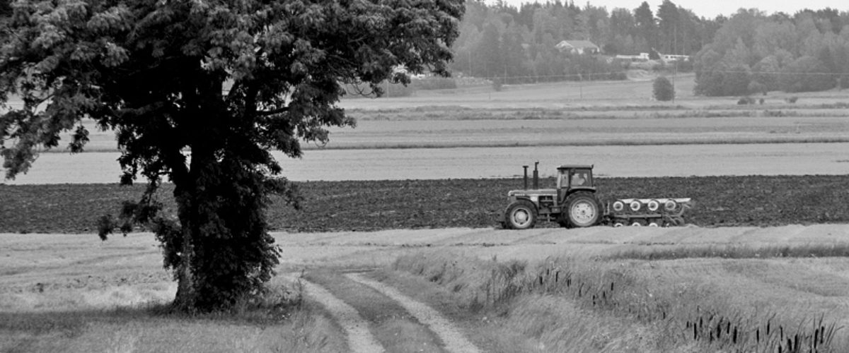 A man and his tractor