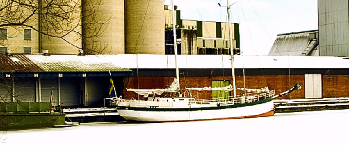 Winter Harbour