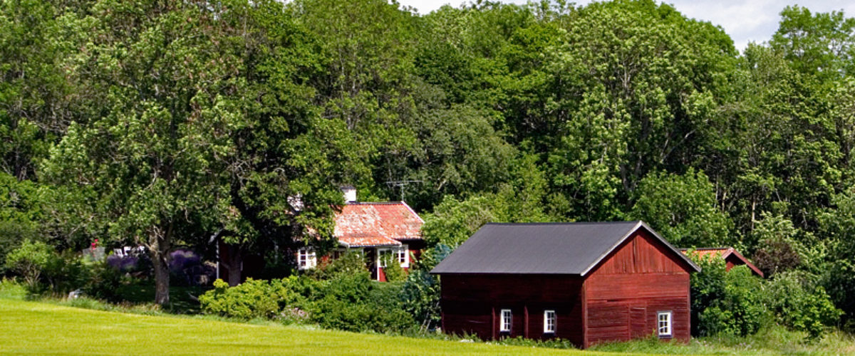 Red cottage in the woods