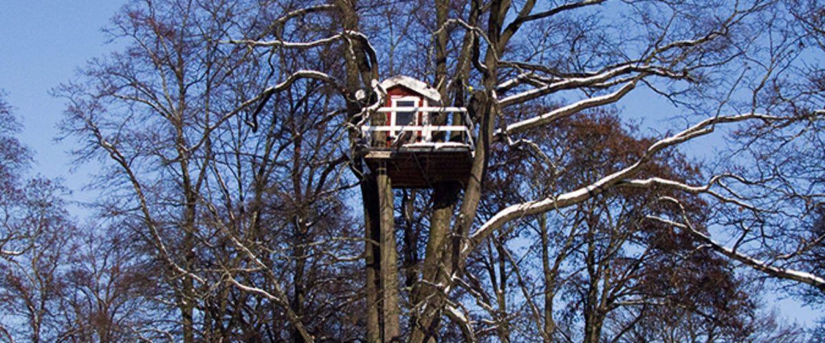The Woodpecker Hotel