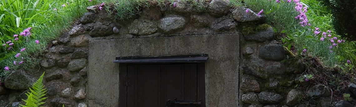 Entrance to Wonderland II