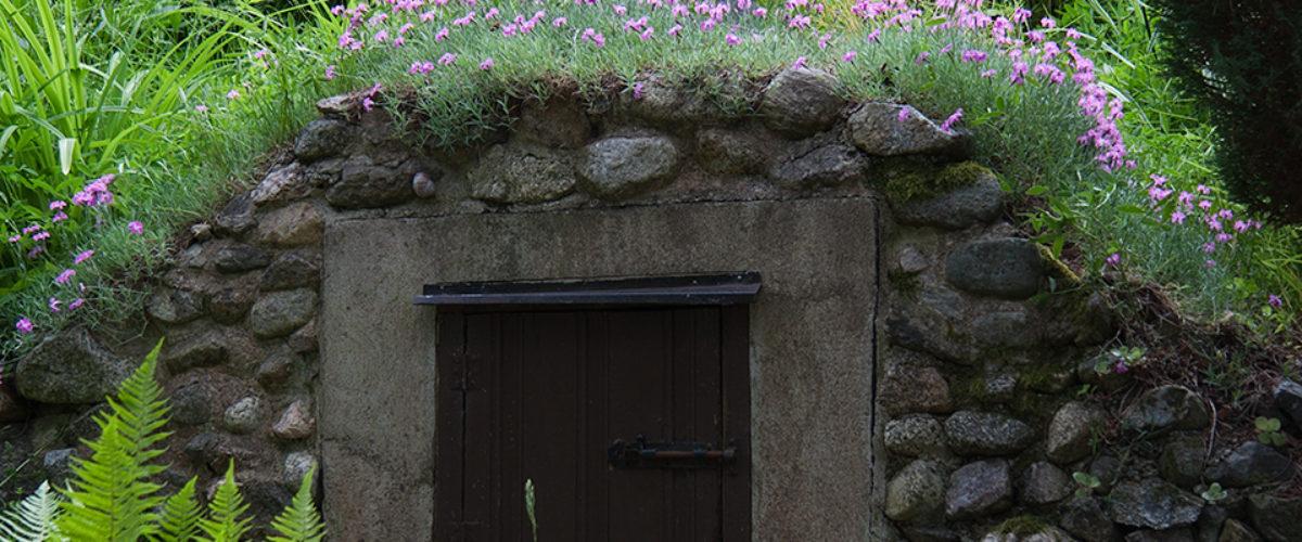 Entrance to Wonderland II