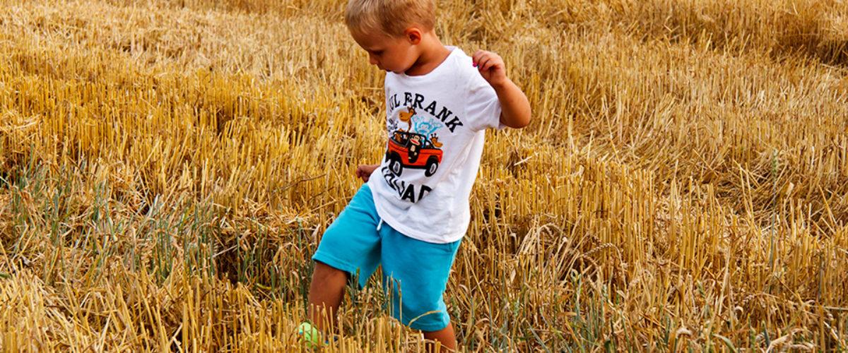 Fields of Gold - Prince Isak