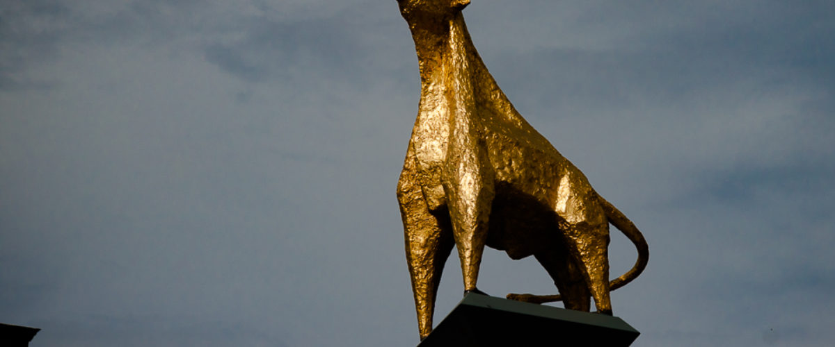 The gold plated bronze bull